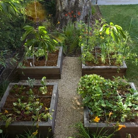 20 Raised Bed Garden Designs And Beautiful Backyard Small Backyard Vegetable Garden Ideas