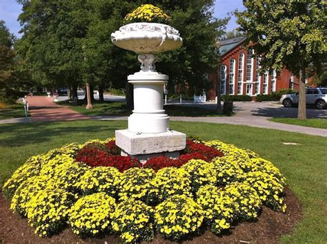 Missouri Botanical Garden Events Missouri Botanical Garden St Louis Missouri Park