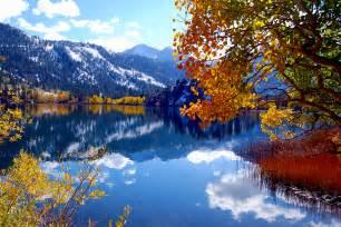 california fall color gull lake california fall color