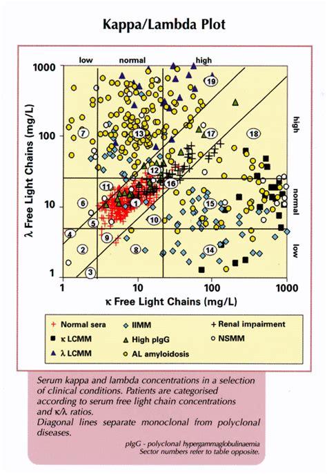 kappa lambda free light chain ratio high elevated kappa and lambda free light chains iron blog
