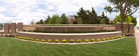 Mba Health Administration Tamu by Top 50 Best Mba In Healthcare Management Degree