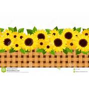 Horizontal Seamless Background With Sunflowers And Stock Image