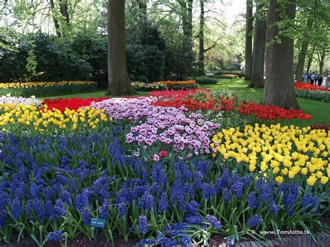 most beautiful flower gardens in the world the most beautiful flower gardens in the world
