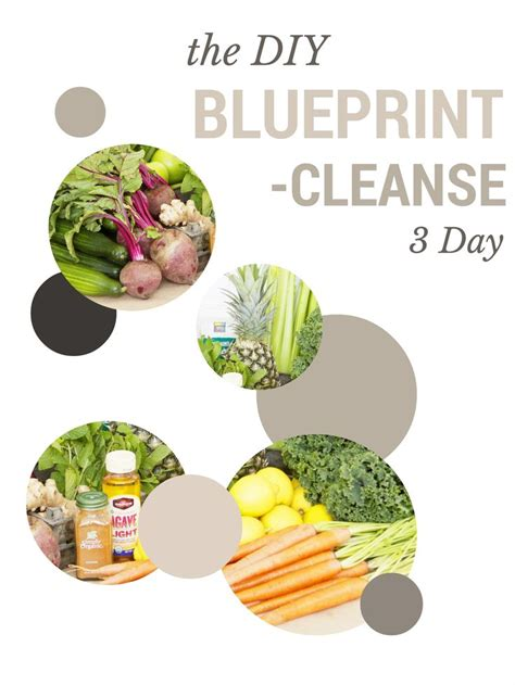 Juice Master 3 Day Detox Weight Loss by Best 25 Blueprint Cleanse Ideas On Detox