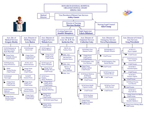 hospital organizational chart hospital organizational chart pictures to pin on