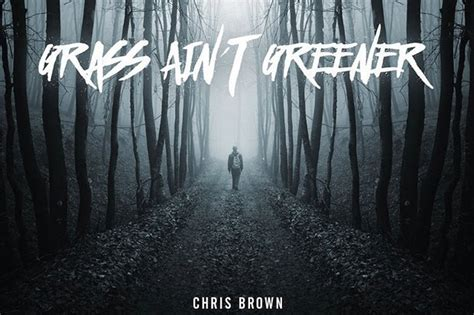 the grass is greener till you get to the other side books chris brown s new single is called quot grass ain t greener