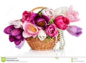 cesta com os ramalhetes coloridos das flores das tulipas