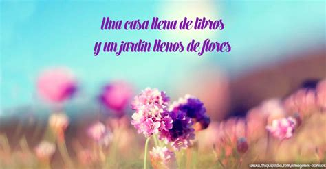 imagenes flores y frases im 225 genes de flores bonitas y hermosas con frases