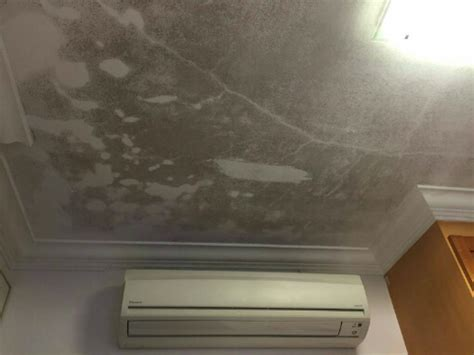 ceiling leak from upstairs bathroom how to get rid of mould and mildew tips to remove mould