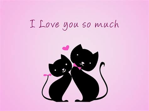 wallpaper whatsapp romantic kissing cat love wallpaper of whatsapp kissing cat love