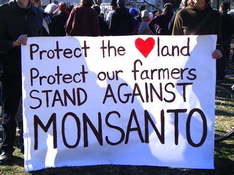 monsanto supreme court genetically modified justice why the supreme court ruled
