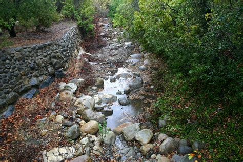 Landscape Creek At Last Has El Nino Finally Arrived