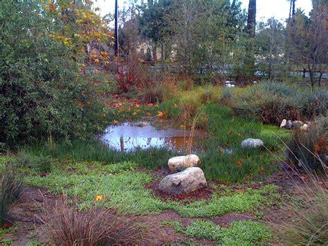Garden Of Arlington by Arlington Garden In Pasadena Pasadena S Water Wise Community Supported Garden