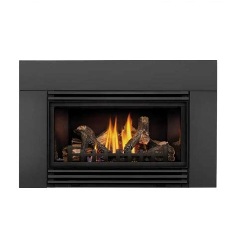 Napolean Fireplace Inserts by Napoleon Roxbury 30 Gas Fireplace Insert