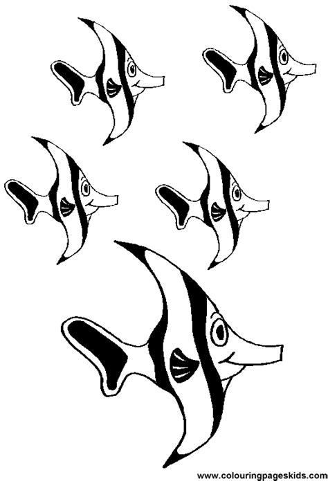 coloring page school of fish school of fish coloring page clipart panda free