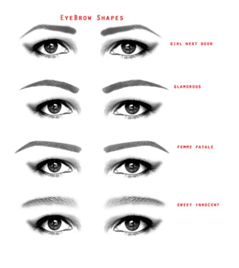 stylish eyebrows shapes for black women image gallery eyebrow styles