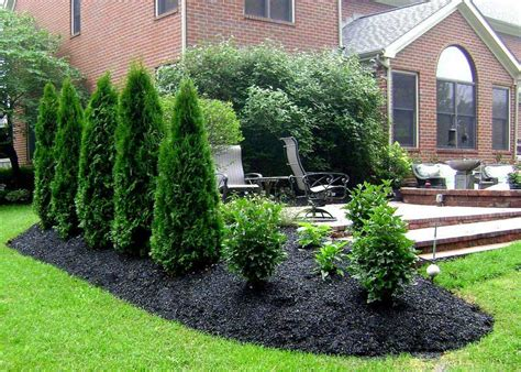 Small Backyard Privacy Ideas Privacy Backyard Ideas Marceladick