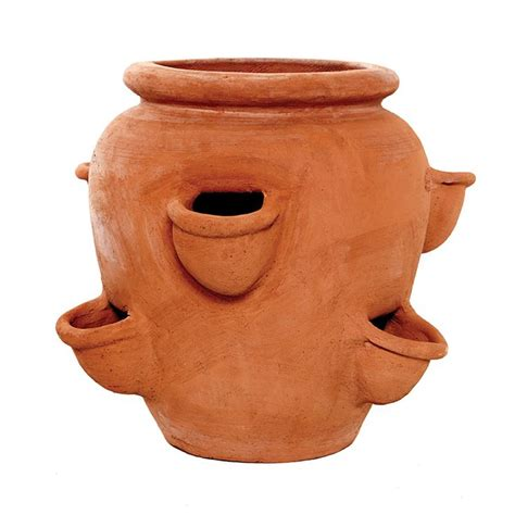 Terracotta Strawberry And Herb Planter by 1000 Images About The Tuscan Sun Terracino Planters And Pots On Herb Pots