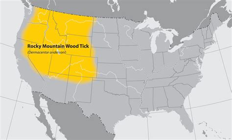 rocky mountains usa map cdc approximate distribution of the rocky mountain wood