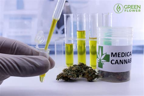 How Can Marijuana Detox Take by How Can You Detox When You Consume Cannabis