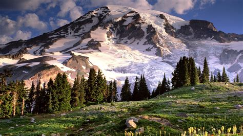 wallpaper wa mt rainier wallpaper 25950