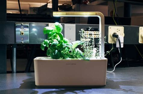 review click and grow smart herb garden click grow smart herb garden review rating pcmag com