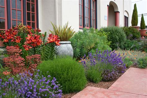 mediterranean garden design how to create a tuscan garden north coast gardening