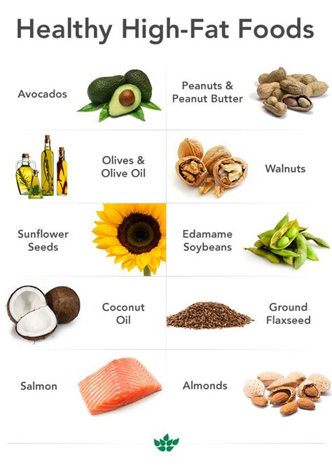 healthy fats rich foods healthy high foods health tips high