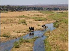 Kruger National Park – Reiseführer auf Wikivoyage 134d