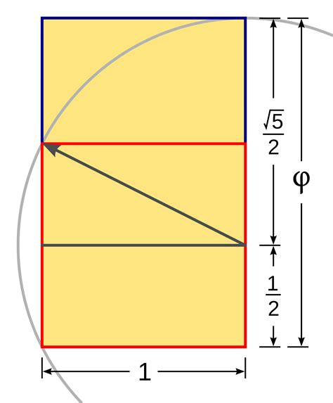 golden section dimensions file golden rectangle construction svg wikipedia