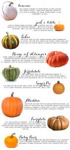 your ultimate fall pumpkin guide earnest home co