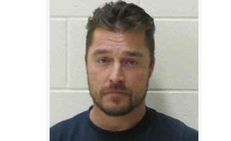 Chris Soules Criminal Record 17 Best Ideas About Criminal Record On Al Capone Italian Mobsters And