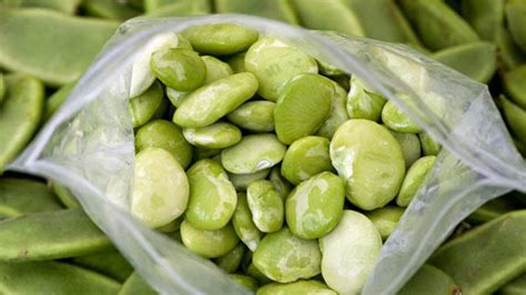 The Bean Lima Comes In Like A by Farmers Market Report Lima Beans Are In Season We