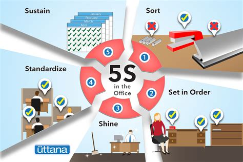 what is 5s and why is it important uttana