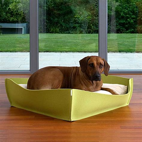 nice dog beds dog bed bowl a puristic very nice orthopaedic dog bed out