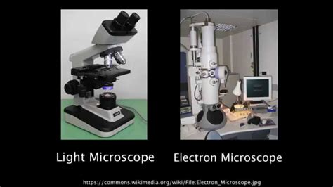 1 2 resolution of electron microscopes versus light