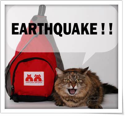 Slingbag Cat cat slingbag products save your pet pack