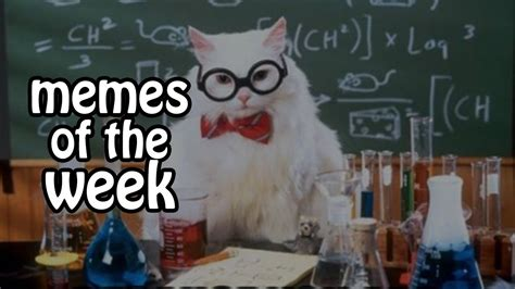 Top Memes Of The Week - best memes of the week 1 february 2015 youtube