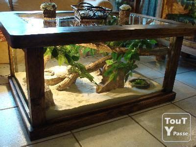 coffee table reptile terrarium 25 best ideas about reptile cage on snake