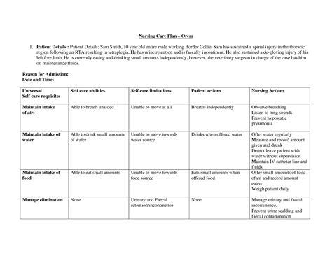 school care plan template dorothea orem care plan search nursing school
