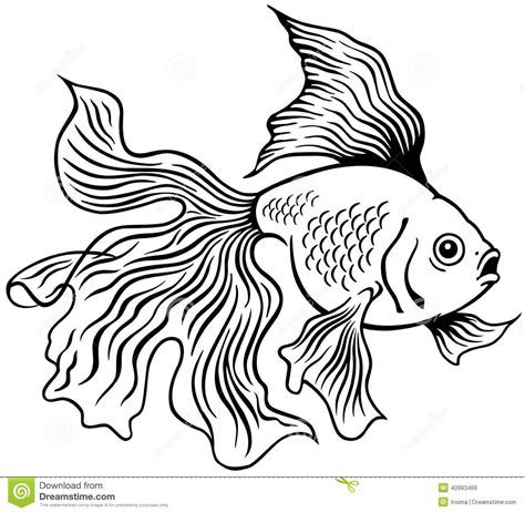 goldfish black white stock vector illustration of shui