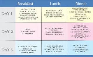 The military diet the 3 day diet lose up to 10 pounds a week