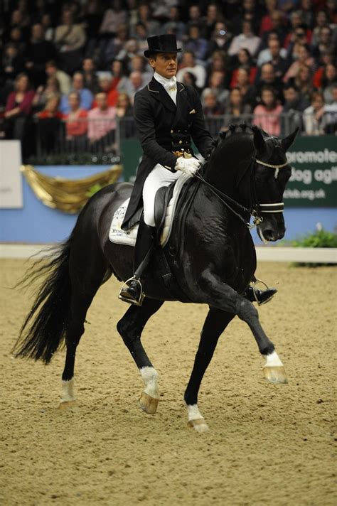 best dressage edward gal and moorlands totilas 1000 images about dressage extended trot on