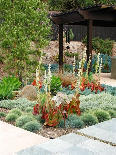 Backyard Plant Ideas 1000 Ideas About Modern Landscape Design On Modern Landscaping Tropical
