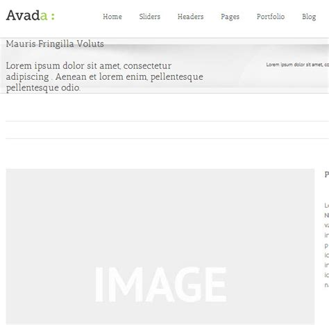 avada theme grid avada theme add more text in portfolio title whiterabbit