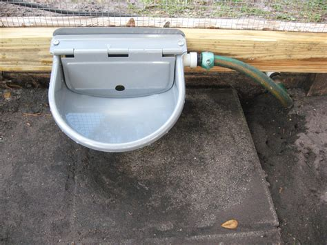 automatic waterer our automatic chicken waterer