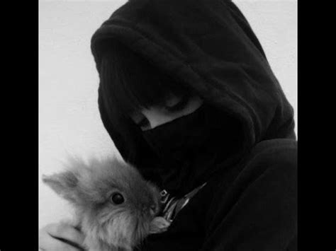 animal liberation front alf youtube