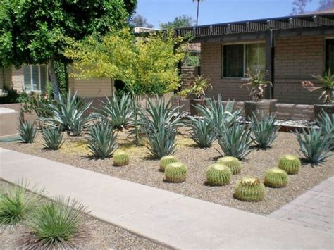 Desert Backyard Landscaping Ideas Desert Landscaping Ideas Basic To Design A Great Backyard
