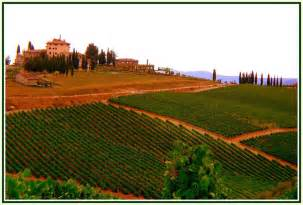 Wineries Near Wineries Near Florence