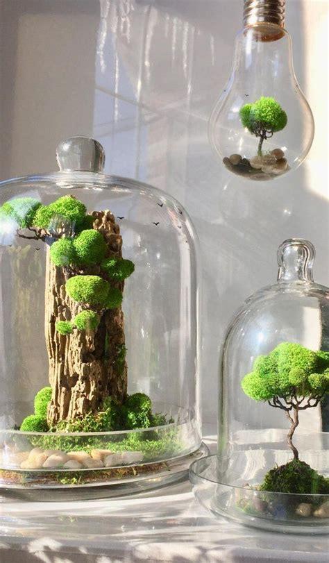 glass dome terrarium artificial plant decoration